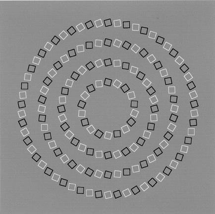 Concentric circles optical illusion